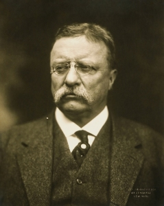 Where Have You Gone Teddy Roosevelt