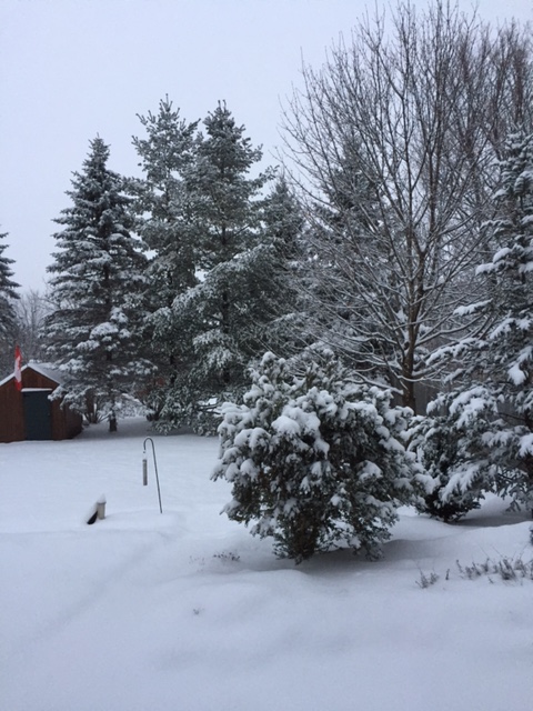 dear-canada-winter